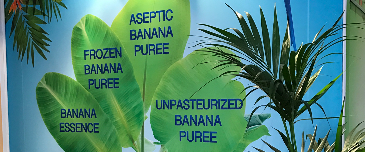 paradise_products